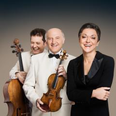 8/8  1 Klavirski trio Brahms, Dunaj