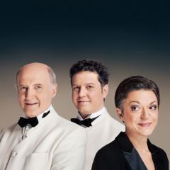 7/8  Klavirski trio Brahms, Dunaj 1