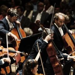 1/1  Concertgebouw 1